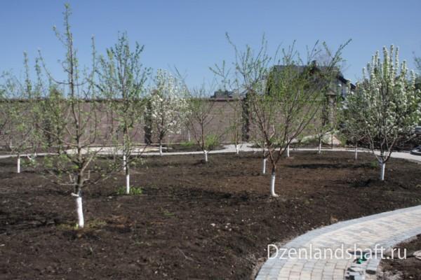 arhangelskoe1-landscaping-design-302B7A1D04-EB21-48E9-8311-4D2196A4FC73.jpg