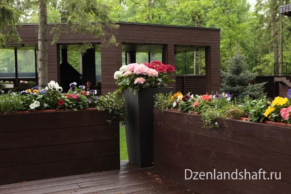 landscaping-design-newriga-300DC97A5-2970-4203-B910-5036E2619190.jpg