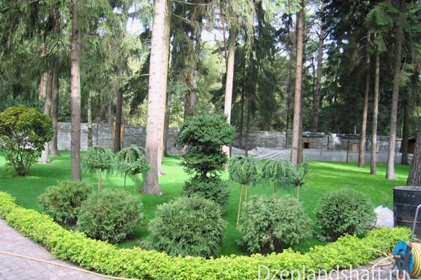 landscaping-design-viakom-19C91C3EFF-007A-486D-AEB3-5685197E7CE8.jpg